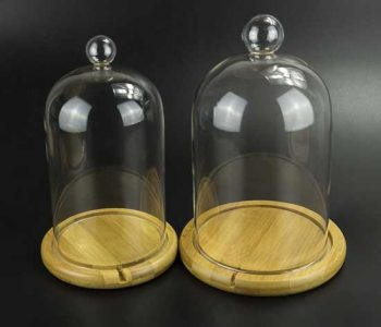 Glass Bell Jar with Wood Base